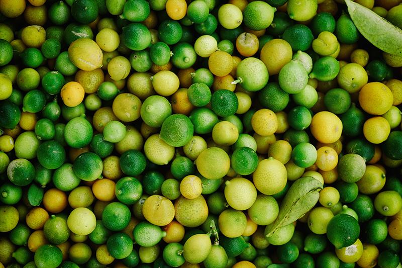propiedades_limon
