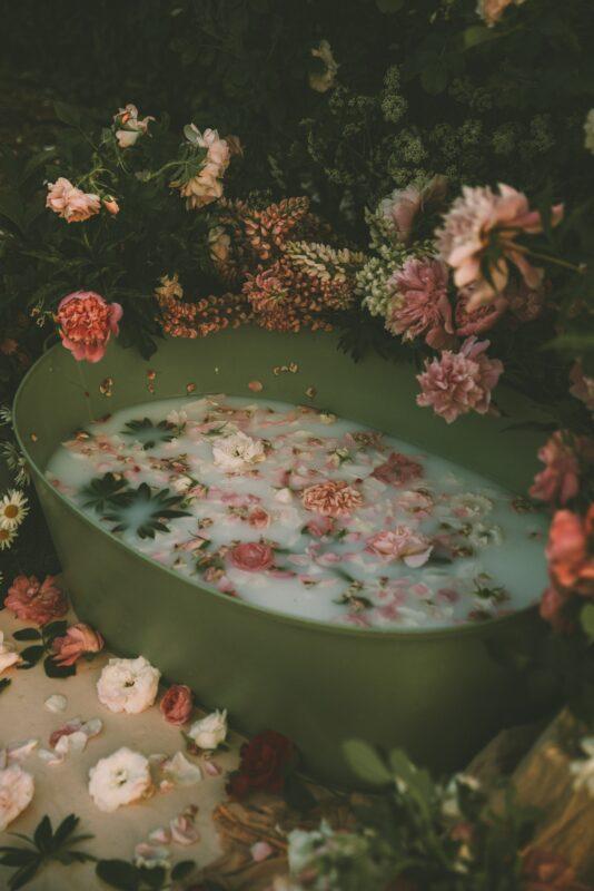 herbalismo_medellin